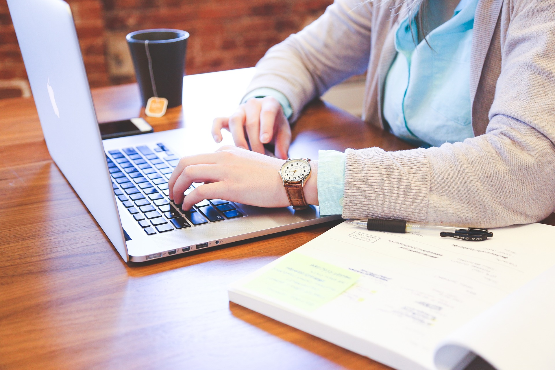 devojka-kuca-na-laptopu
