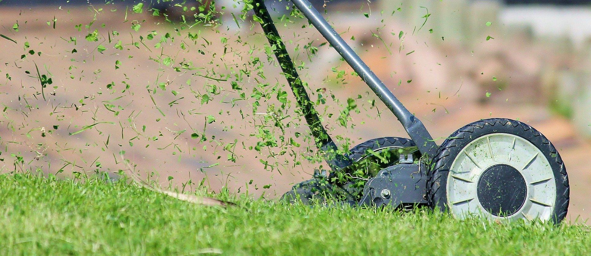 travnjak-bašta