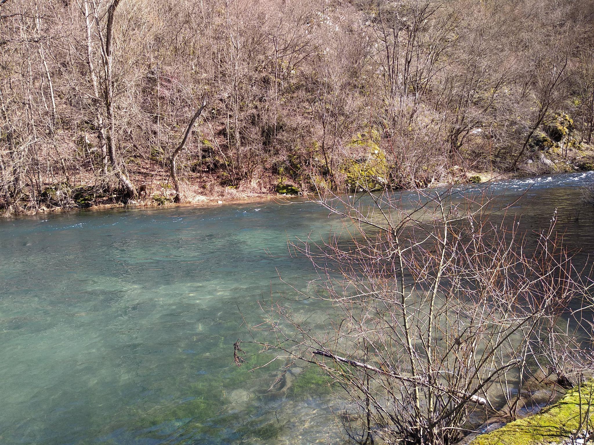 reka krupaja
